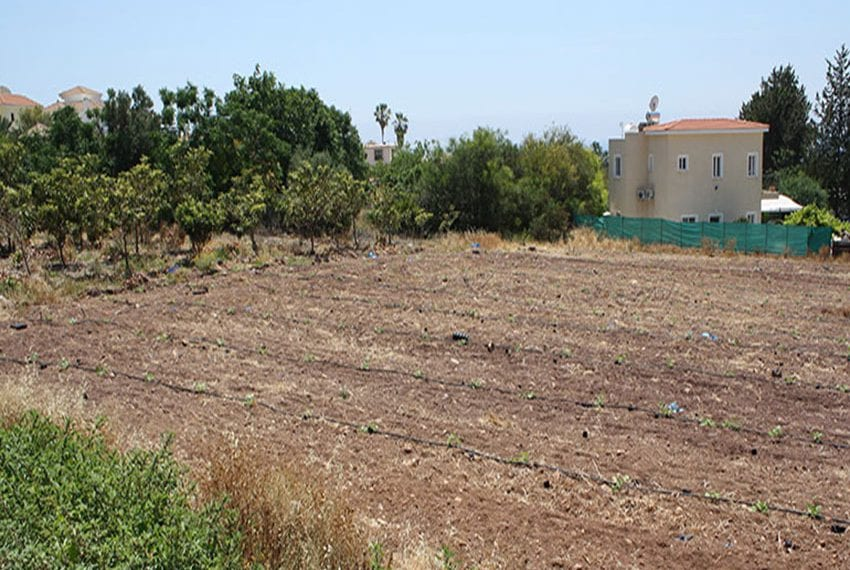 Large Plot of Land for Sale in Paphos' Akamas region