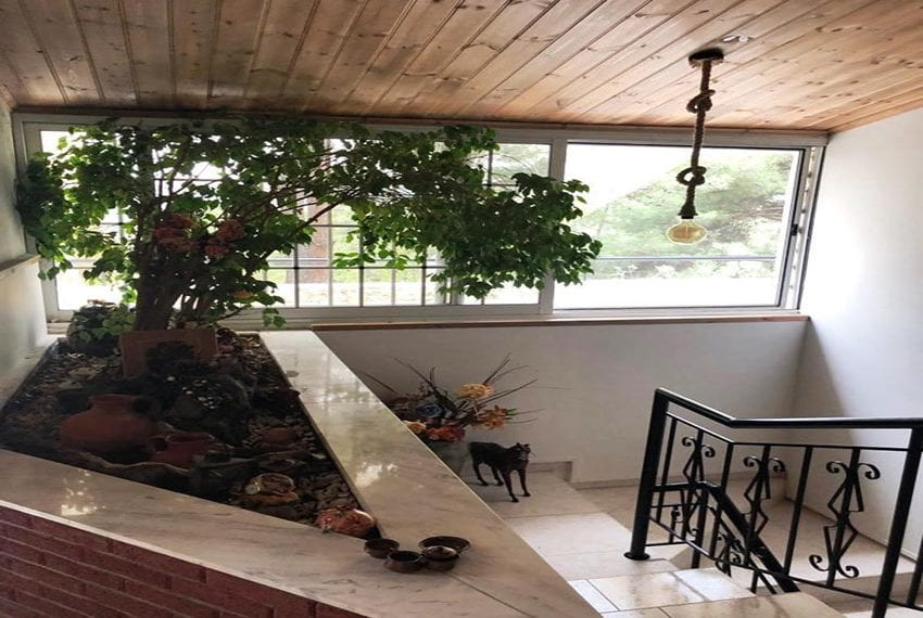 House for rent in Trodos mountains06