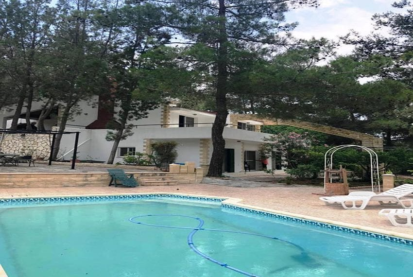 House for rent in Trodos mountains13