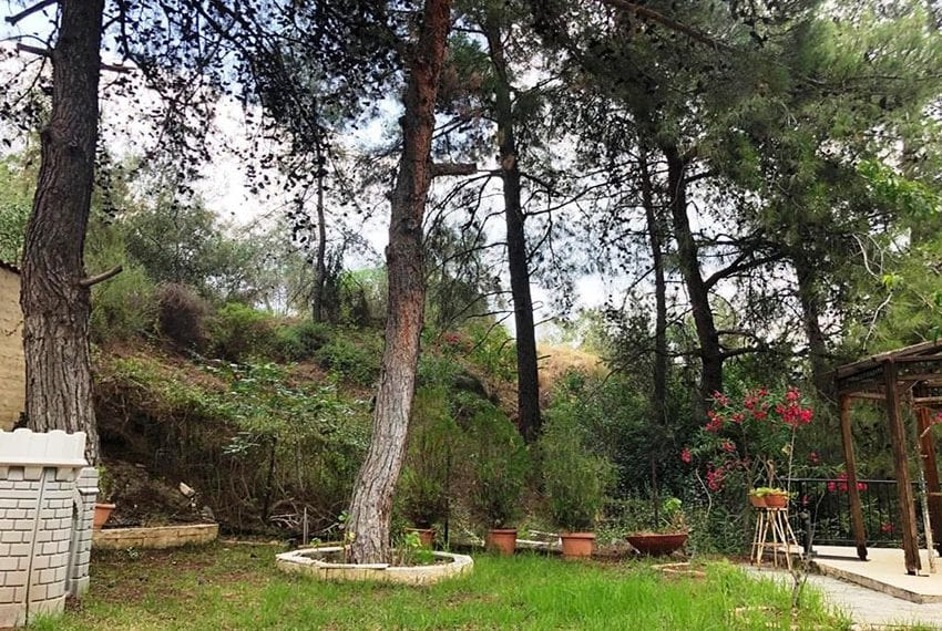 House for rent in Trodos mountains20