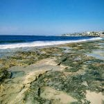 Hotel apartments for sale in Paphos Cyprus