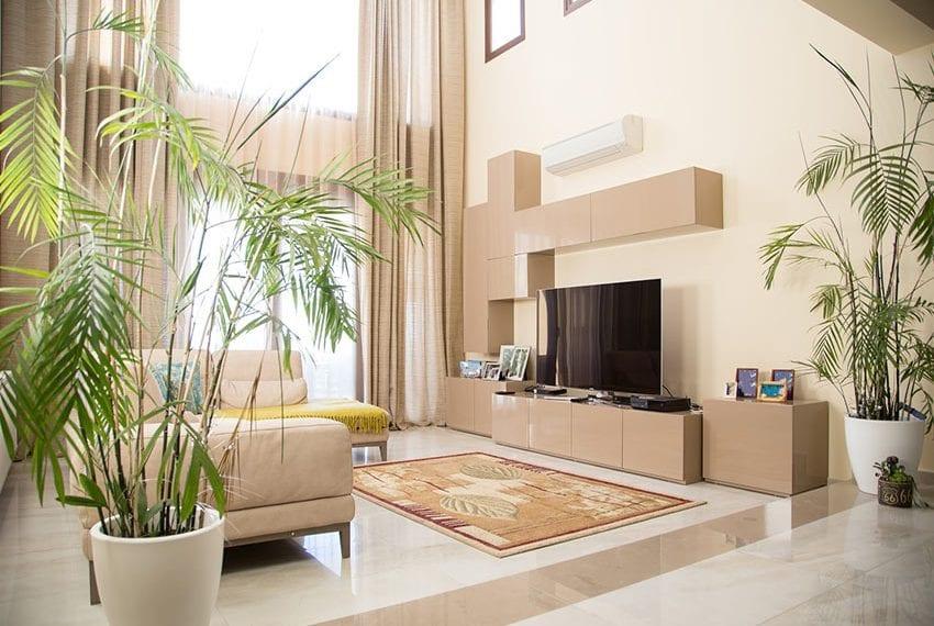 Luxury villa for sale in Limassol Sfalaggiotissa Area03