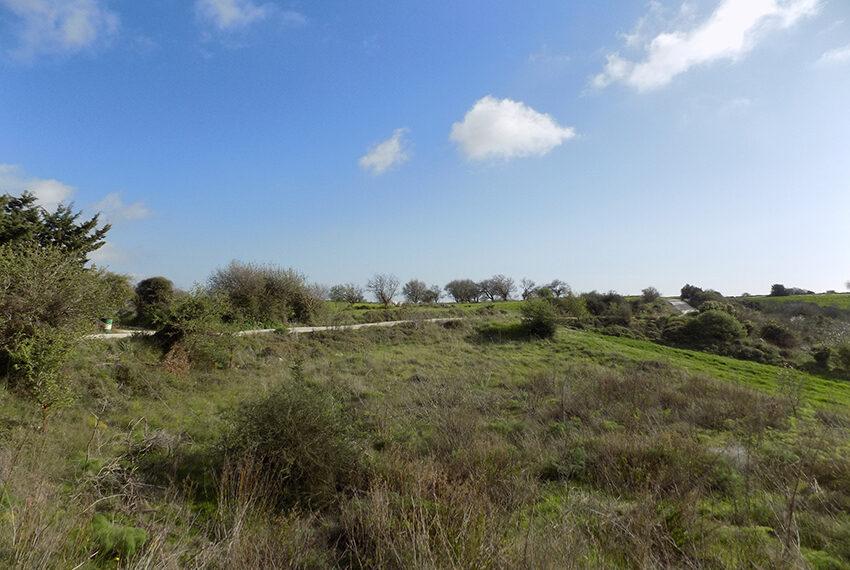 Halkyon villa for sale on large plot Marathunda Paphos_50