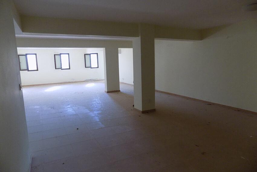 Halkyon villa for sale on large plot Marathunda Paphos_23