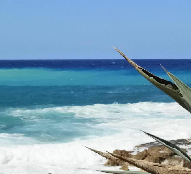 Kissonerga beach front plot of land for sale