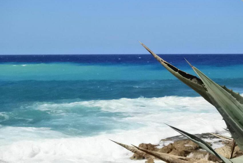 kissonerga-beach-front