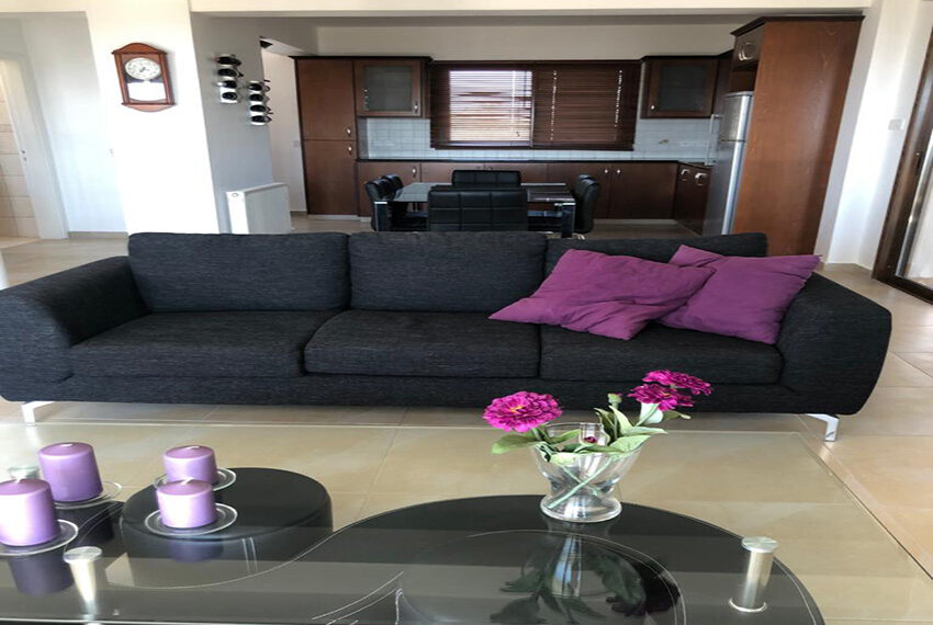 House for rent with central heating in Tsada village_13
