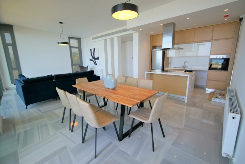 Modern 4 bedroom 4 bathroom villa for rent Chloraka_1