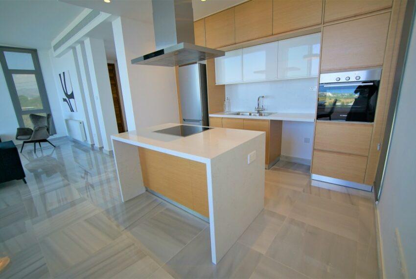 Modern 4 bedroom 4 bathroom villa for rent Chloraka_6