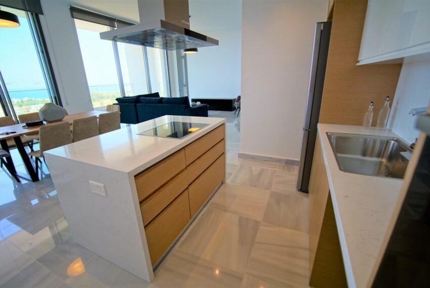 Modern 4 bedroom 4 bathroom villa for rent Chloraka_7