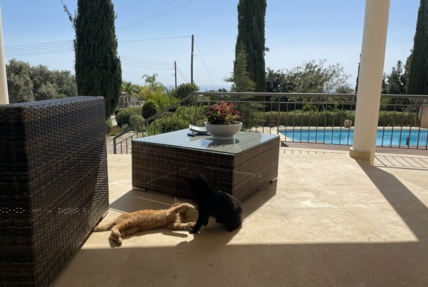 For rent villa with private swimming pool in lower Tala _17