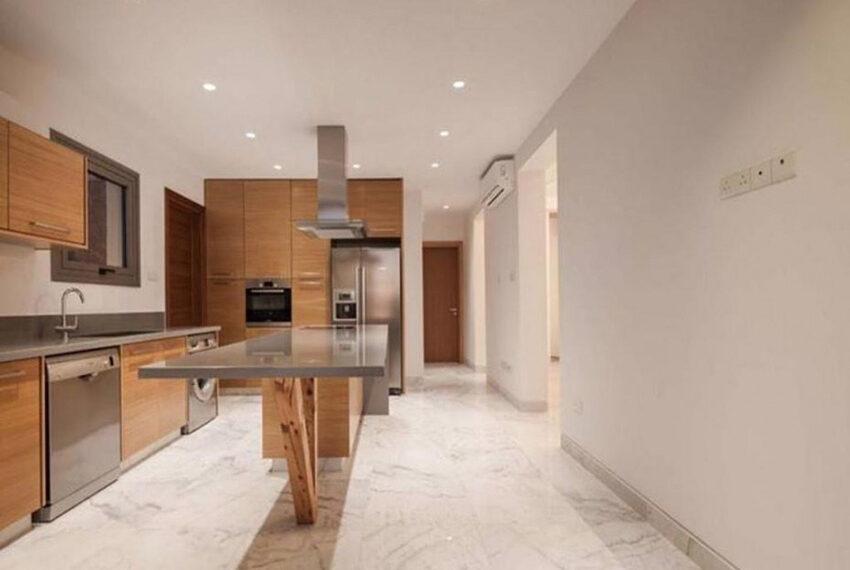 Luxury 4 bedroom villa for rent long term Chloraka_12