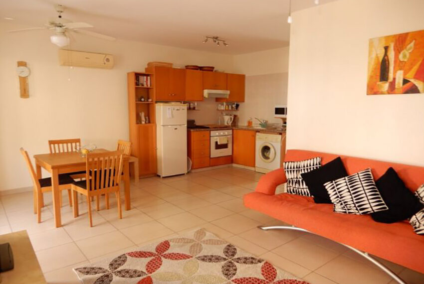 Spacious 1 bedroom apartment for rent long term Emba_3