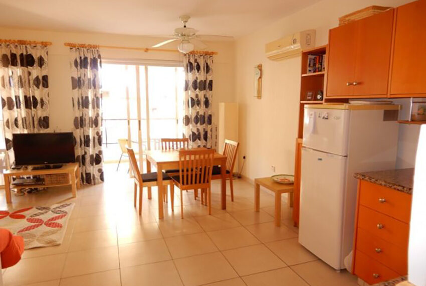 Spacious 1 bedroom apartment for rent long term Emba_5