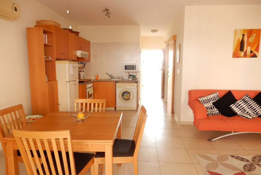 Spacious 1 bedroom apartment for rent long term Emba_7